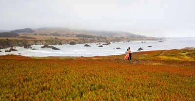 Bodega Bay Sonoma Coast State beach