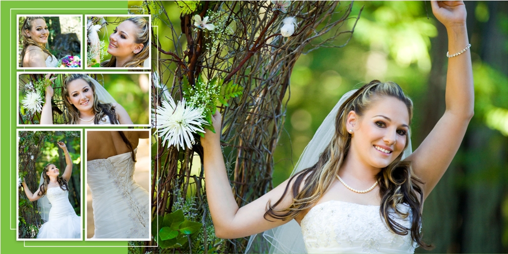 Wedding Al Design Ideas Digital Photo Book And Photograph By Northern California Photographer